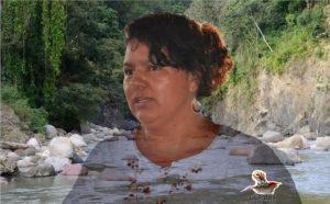 Rio Gualcarque rio sagrado